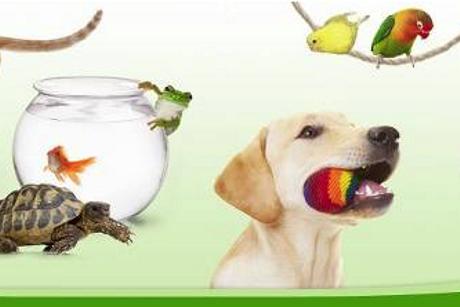 ZooPlus. Sklep zoologiczny online